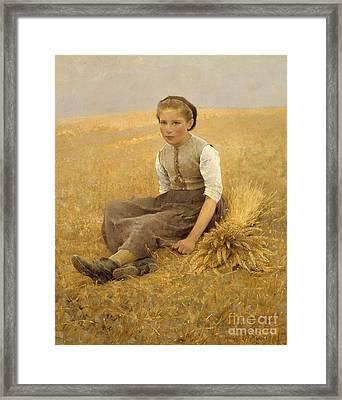 The Little Gleaner, 1884 Framed Print by Hugo Salmson