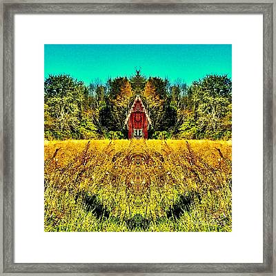The Little House In The Field Framed Print