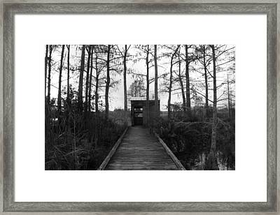 The Little Old Shack  Framed Print by Bradley Nichol