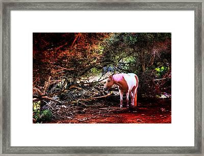 The Little Pink Unicorn By Pedro Cardona Framed Print by Pedro Cardona Llambias