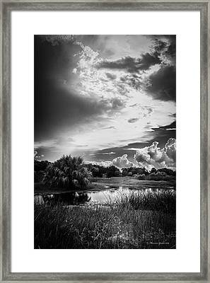The Little Pond Framed Print