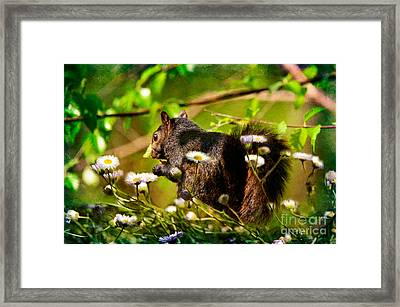 The Little Things Framed Print by Lois Bryan