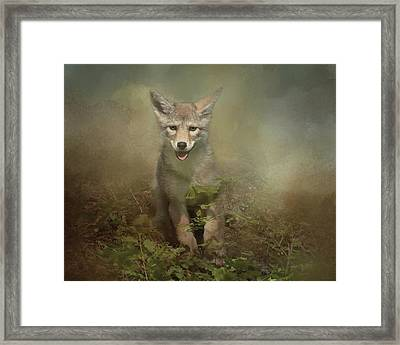 The Littlest Pack Member Framed Print