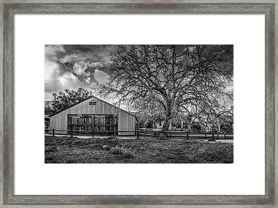 The Livery Stable And Oak Framed Print
