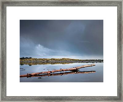 The Log Framed Print by Greg Nyquist