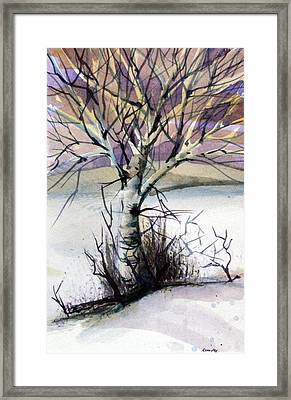 The Lone Tree Framed Print by Mindy Newman