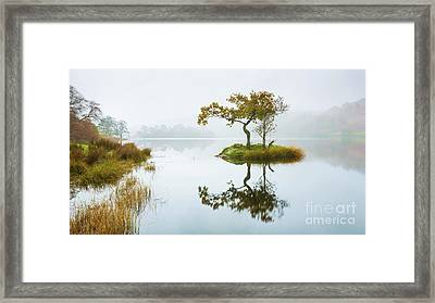 The Lone Tree - Rydal Water Framed Print