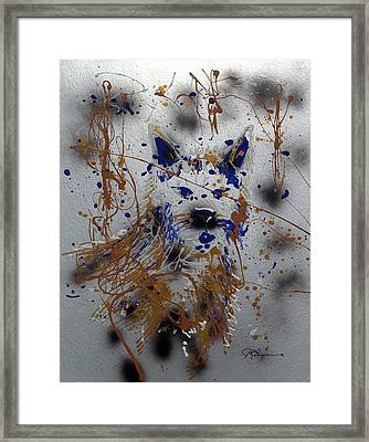 The Lone Wolf  Canis Lupus Framed Print by J R Seymour
