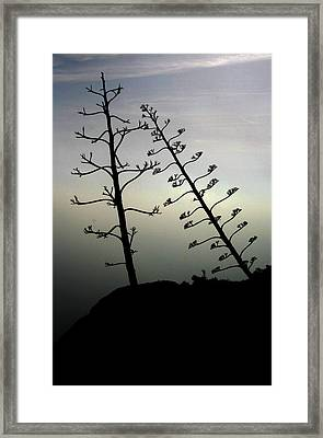 The Lonely Couple Framed Print by Jason Hochman