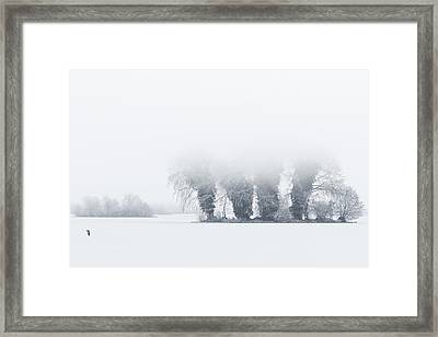 The Lonely Heron Framed Print by Roeselien Raimond