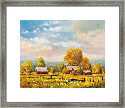 The Lonely Horse Framed Print