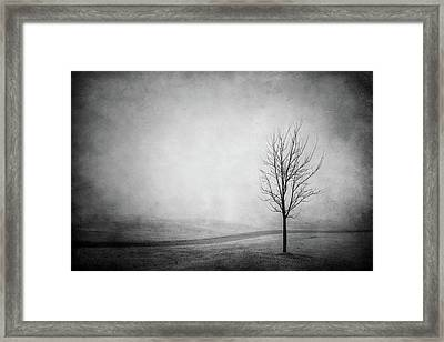 The Lonely Path Framed Print
