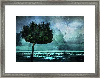 The Lonely Tree Framed Print by Declan O'Doherty