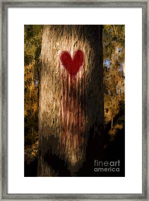 The Lonely Tree Framed Print