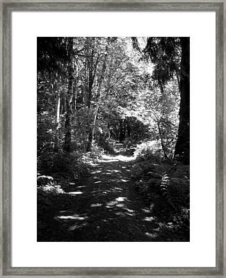The Long And Winding Road  Bw Framed Print by Ken Day
