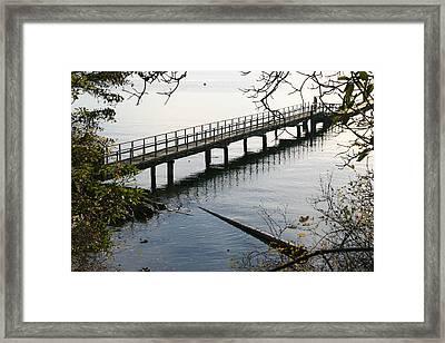 The Long Dock Framed Print by Doug Johnson