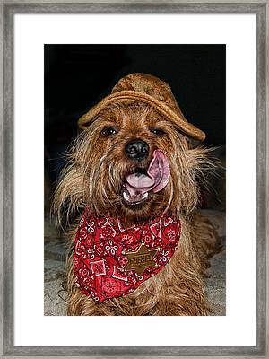 The Long Tongue Of The Law Framed Print by Norma Rowley