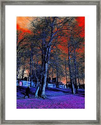The Long Walk Home Framed Print