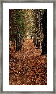 The Long Way Home Framed Print by Jacquin