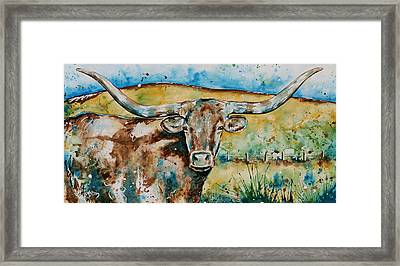 The Longhorn  Framed Print by Afton Ray-Rossol