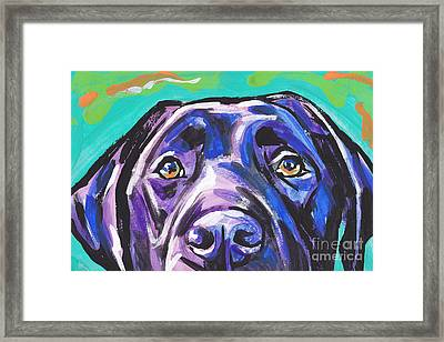 The Look Of Lab Framed Print