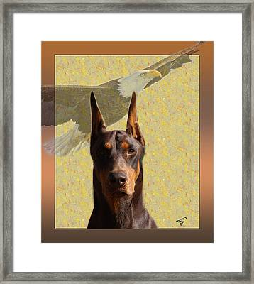 Dobermans..the Look Of The Eagle Framed Print by Maria C Martinez