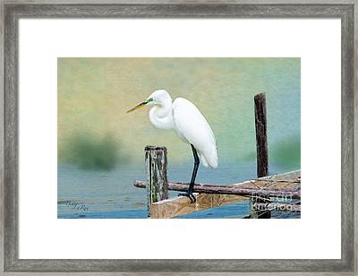 The Lookout Framed Print by Betty LaRue