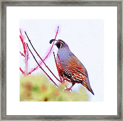 The Lookout Framed Print by Michele Ross