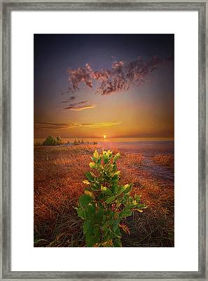 The Lord Bless You And Keep You Framed Print