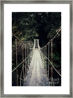 The Lost Path Framed Print by Evelina Kremsdorf
