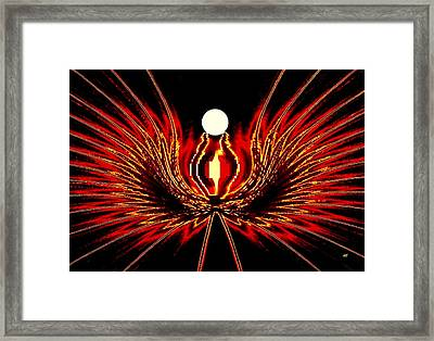 The Lost Pearl Framed Print