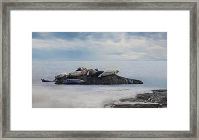 The Lounge In Framed Print by Robin-Lee Vieira