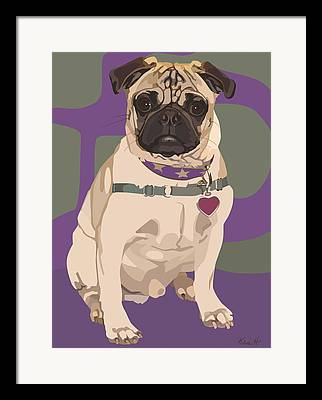 Pug In Purple Collar Framed Prints