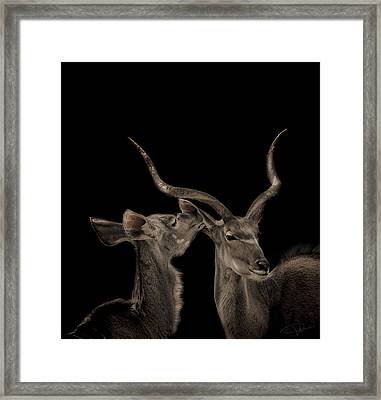 The Lovers Framed Print by Paul Neville