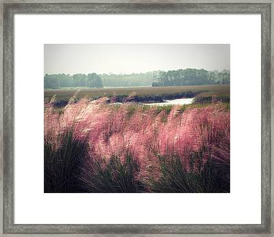 The Lowlands Framed Print by Amy Tyler