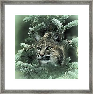 The Lynx Framed Print