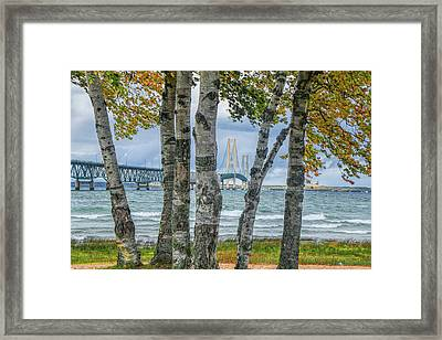 The Mackinaw Bridge By The Straits Of Mackinac In Autumn With Birch Trees Framed Print by Randall Nyhof