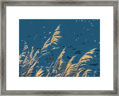 The Madison In Bear Trap Canyon Framed Print