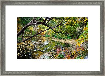 The Magic Begins Framed Print