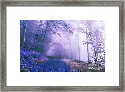 The Magic Forest Framed Print by Chris Armytage