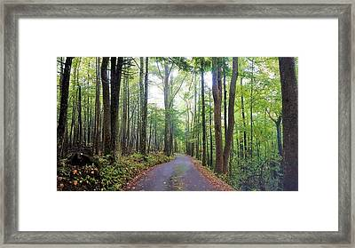 The Magic Forest Framed Print by Gary Edward Jennings