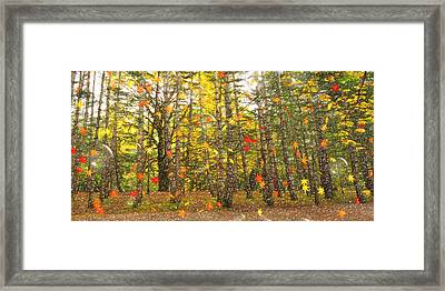 The Magic Of Autumn Framed Print by L Wright