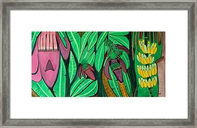 The Magic Of Banana Blossoms Framed Print