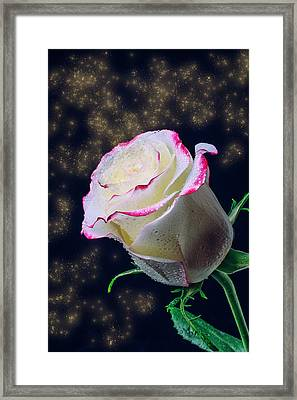The Magic Of Roses Framed Print by Garry Gay