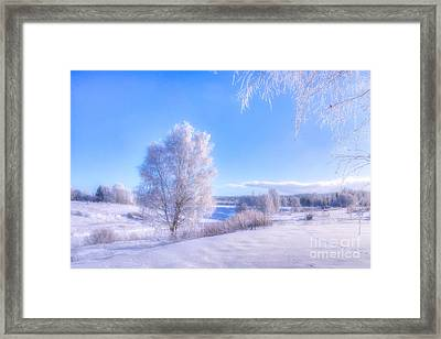 The Magic Of Winter 3 Framed Print
