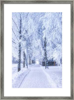 The Magic Of Winter 6 Framed Print