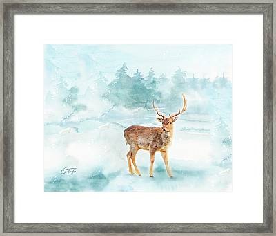Framed Print featuring the painting The Magic Of Winter  by Colleen Taylor