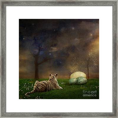 The Magical Of Life Framed Print by Martine Roch