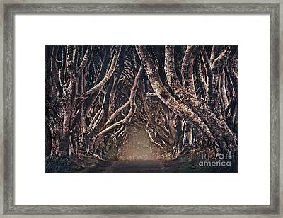 The Magical Path Framed Print by Evelina Kremsdorf