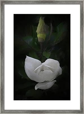 The Magnolia Da Framed Print by Ernie Echols